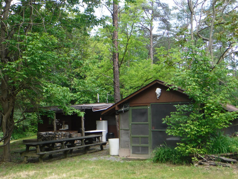 cabin rentals san marcos tx vacation rental cabin the treehouse